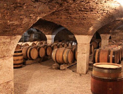 La Bourgogne Curiosités & Terroir