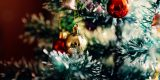 Christmas-Tree-1149619__340