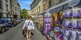 Provence-2504742__340