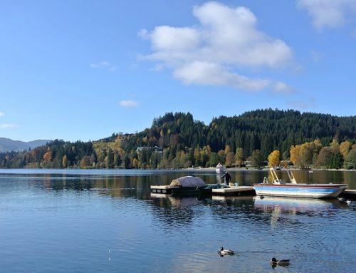 Forêt Noire et Lac de Constance